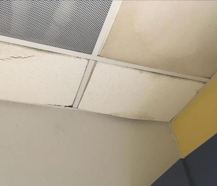 damaged ceiling tiles