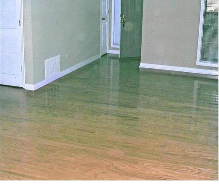 hardwood floors with standing water