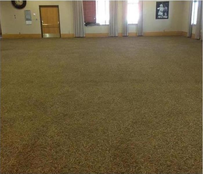 tan carpeting after drying and cleaning