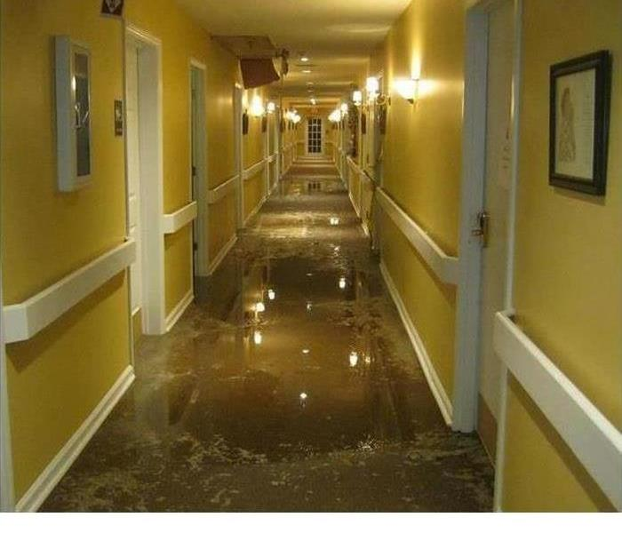 water standing in a hallway with yellow paint and carpeting removed
