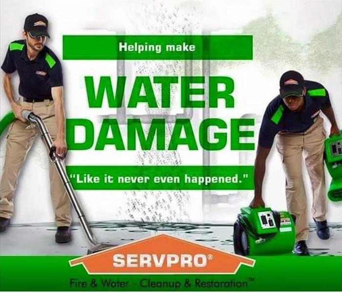 green photo with SERVPRO technicians