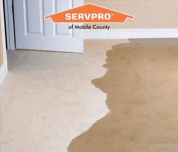 picture of cream carpeting with standing water
