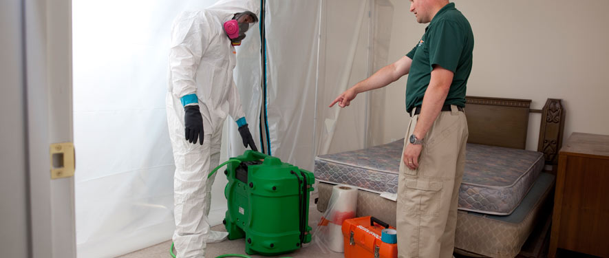 Mobile, AL mold removal process